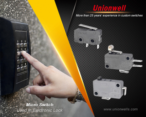 micro switch manufacturer33.jpg